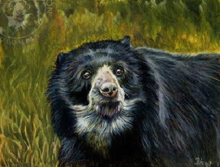 Mito del oso ucumari